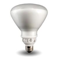 Bulk R40-Lamp Compact Fluorescent - CFL - 20watt - 27K