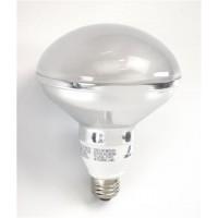 Bulk Top R30-Lamp Compact Fluorescent - CFL - 20watt - 27K